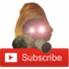 0RIIS's avatar