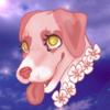 0valley0's avatar