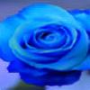 10blue10's avatar