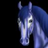 17mndrake's avatar