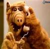 1987Hyenansaurrus's avatar