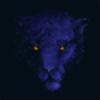 1BlueCat's avatar