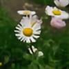 1Secret-Identity1's avatar