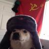 21meast's avatar