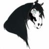22SSOTC's avatar