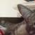 23spaceshot's avatar