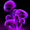 30011887's avatar