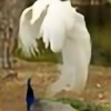 370wii's avatar