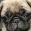 37a8's avatar
