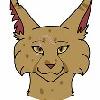 41Dragonheart14's avatar