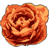 4pplemoon's avatar