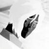 4usq's avatar