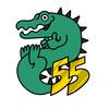 55gator55's avatar