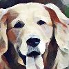 6ixFeetUnder's avatar