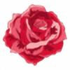 8catpaws's avatar