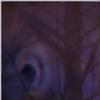 a-secret-key's avatar