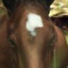 abrians-abrians's avatar