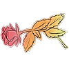AccaliaRose's avatar