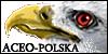 ACEO-Polska's avatar