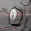 AChickenCupcake's avatar
