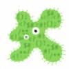 AcidFoxx's avatar