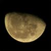 AcinaD's avatar