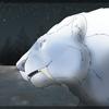 AdNuminousNot's avatar