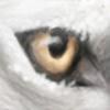 AdoKina's avatar