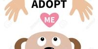 AdoptObsess
