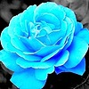 aem2169's avatar