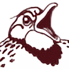 aeon-snowdragon's avatar
