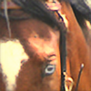 aetharity's avatar