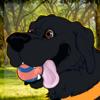 Affyre's avatar