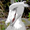 Agent-Blaze's avatar