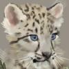 Aieby's avatar