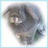Aikatarina's avatar