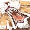 Airena14's avatar