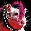 Airishu's avatar
