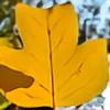 Aitherion's avatar