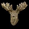 Aitutakii's avatar