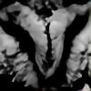 ajrn's avatar