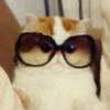 Akemikitten122's avatar