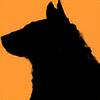 Akira-H's avatar