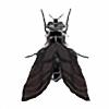 Akvarmin's avatar