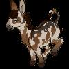 AlaskanCat's avatar
