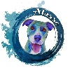 alasseart's avatar
