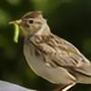 alauda1038's avatar