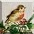 ALBATR0SSS's avatar