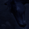 Albionoria-Ndiau's avatar