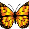 albumioan's avatar